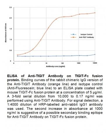 Anti-TIGIT, Rabbit IgG, kappa Antibody