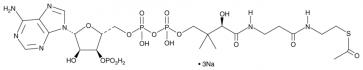 Acetyl Coenzyme A (sodium salt)