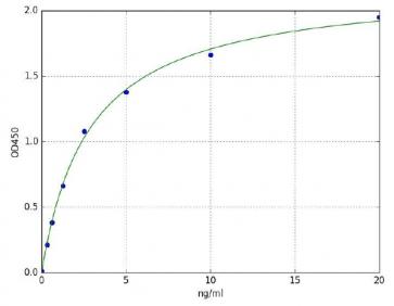 Succinate Dehydrogenase (SDH) (Human) ELISA Kit