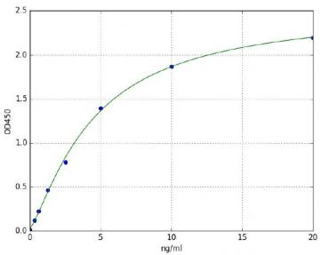 Succinate Dehydrogenase (SDH) (Rat) ELISA Kit