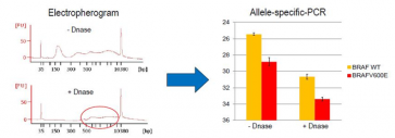 ExoDNAUC™ Conc Exosome DNA Extraction Kit