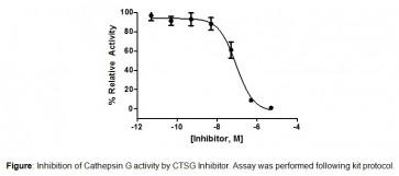 Cathepsin G Inhibitor Screening Kit (Colorimetric)