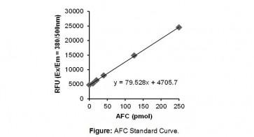 Granzyme B Activity Fluorometric Assay Kit
