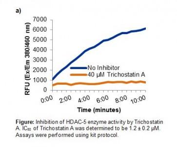 HDAC-5 Inhibitor Screening Kit (Fluorometric)
