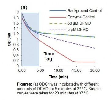 Ornithine Decarboxylase I (ODC1) Inhibitor Screening Kit (Colorimetric)