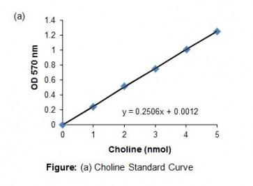 Acid Sphingomyelinase Assay Kit II (Colorimetric)