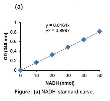 Phosphoglycerate Kinase Activity Assay Kit (Colorimetric)