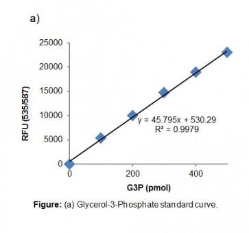 PicoProbe™ Glycerol-3-Phosphate Assay Kit (Fluorometric)