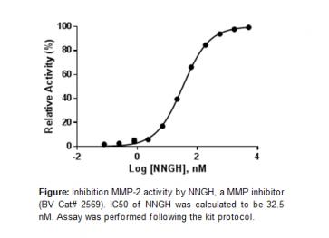 MMP-2 Inhibitor Screening Kit (Fluorometric)