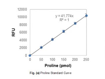 PicoProbe™ Proline Assay Kit (Fluorometric)