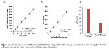 PicoProbe™ ADP Assay Kit (Fluorometric)