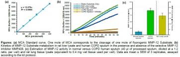 MMP-12 Activity Assay Kit (Fluorometric)