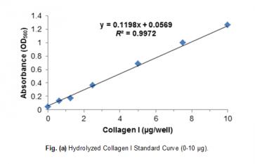 Total Collagen Assay Kit (Colorimetric)