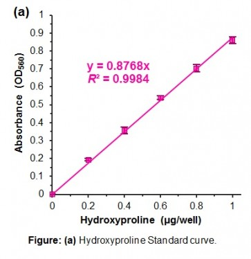 Hydroxyproline Assay Kit (Perchlorate-Free)