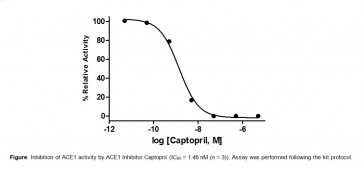 Angiotensin I Converting Enzyme (ACE1) Inhibitor Screening Kit
