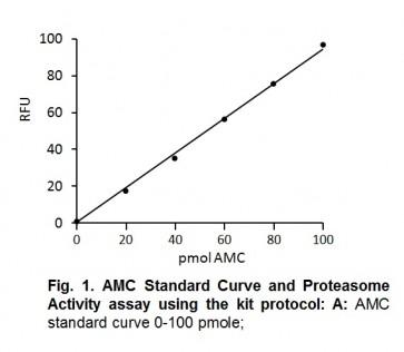 Proteasome Activity Fluorometric Assay Kit