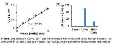 Nitric Oxide Colorimetric Assay Kit