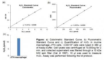 Hydrogen Peroxide Colorimetric/Fluorometric Assay Kit