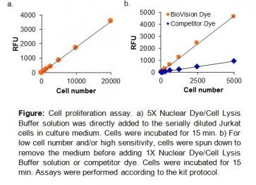 Cell Proliferation Assay Kit (Fluorometric)
