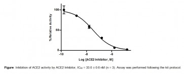 Angiotensin II Converting Enzyme (ACE2) Inhibitor Screening Kit