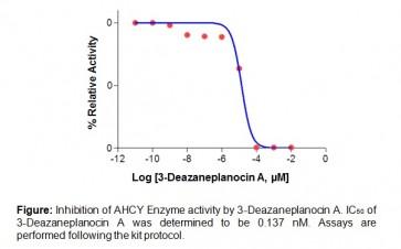 AHCY Inhibitor Screening Kit (Fluorometric)