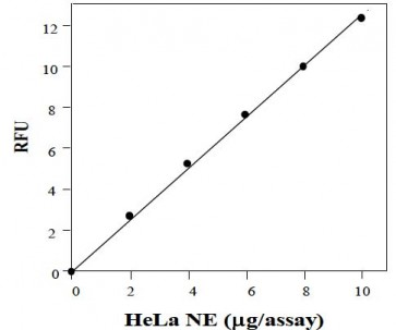 HDAC Activity Fluorometric Assay Kit