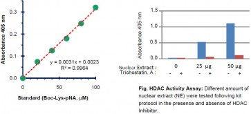 HDAC Activity Colorimetric Assay Kit