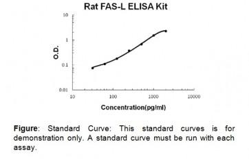 FasL (rat) ELISA Kit