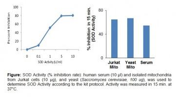 Superoxide Dismutase (SOD) Activity Colorimetric Assay Kit