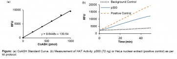 HAT (H4) Activity Fluorometric Assay Kit