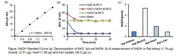 PicoProbe™ NADH Fluorometric Assay Kit