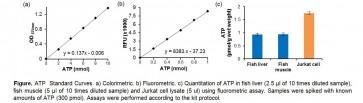 ATP Colorimetric/Fluorometric Assay Kit