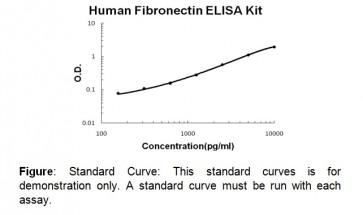 Fibronectin (human) ELISA Kit