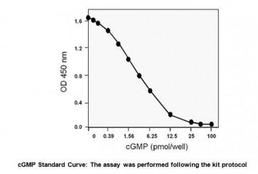 cGMP Direct Immunoassay Kit (Colorimetric)