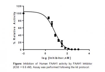 FAAH1 Inhibitor Screening Kit (Fluorometric)