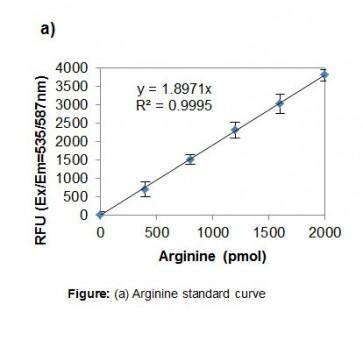 Arginine Assay Kit (Fluorometric)