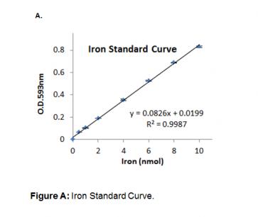 Iron Colorimetric Assay Kit