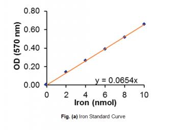 Total Iron-Binding Capacity (TIBC) and Serum Iron Assay Kit (Colorimetric)