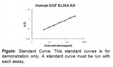 EGF (human) ELISA Kit
