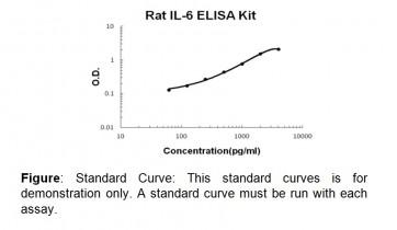 IL-6 (rat) ELISA Kit