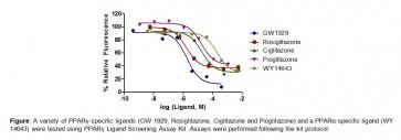 PPARγ Ligand Screening/Characterization Assay Kit (Fluorometric)