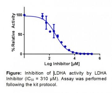 Human Lactate Dehydrogenase A Inhibitor Screening Kit (Colorimetric)