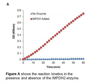 Human Inosine-5'-Monophosphate Dehydrogenase (IMPDH) Inhibitor Screening Assay Kit