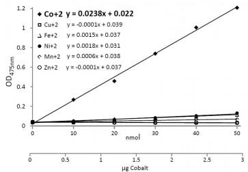 Cobalt Colorimetric Assay Kit