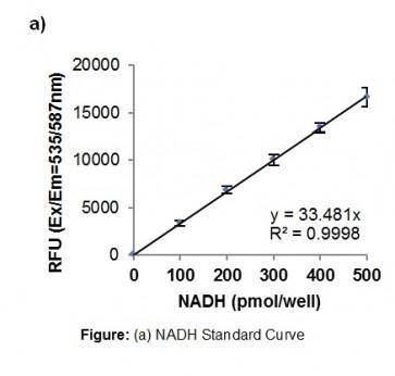PicoProbe™ Malate Dehydrogenase Activity Assay Kit (Fluorometric)