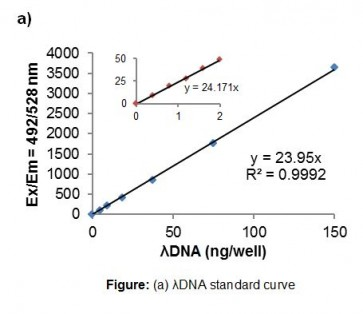 DNA Quantification Assay Kit (Fluorometric)
