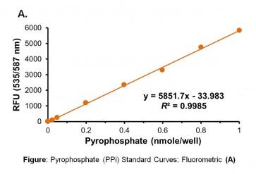 Pyrophosphate (PPi) Assay Kit(Fluorometric/Colorimetric)