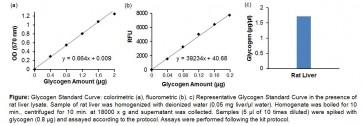 Glycogen Colorimetric/Fluorometric Assay Kit