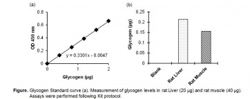 Glycogen Colorimetric Assay Kit II
