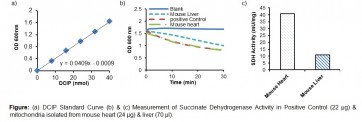 Succinate Dehydrogenase Activity Colorimetric Assay Kit